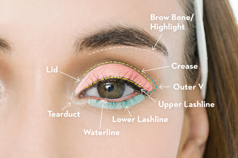 an eye shadow guide for makeup beginners